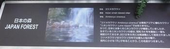 066_mini.JPG